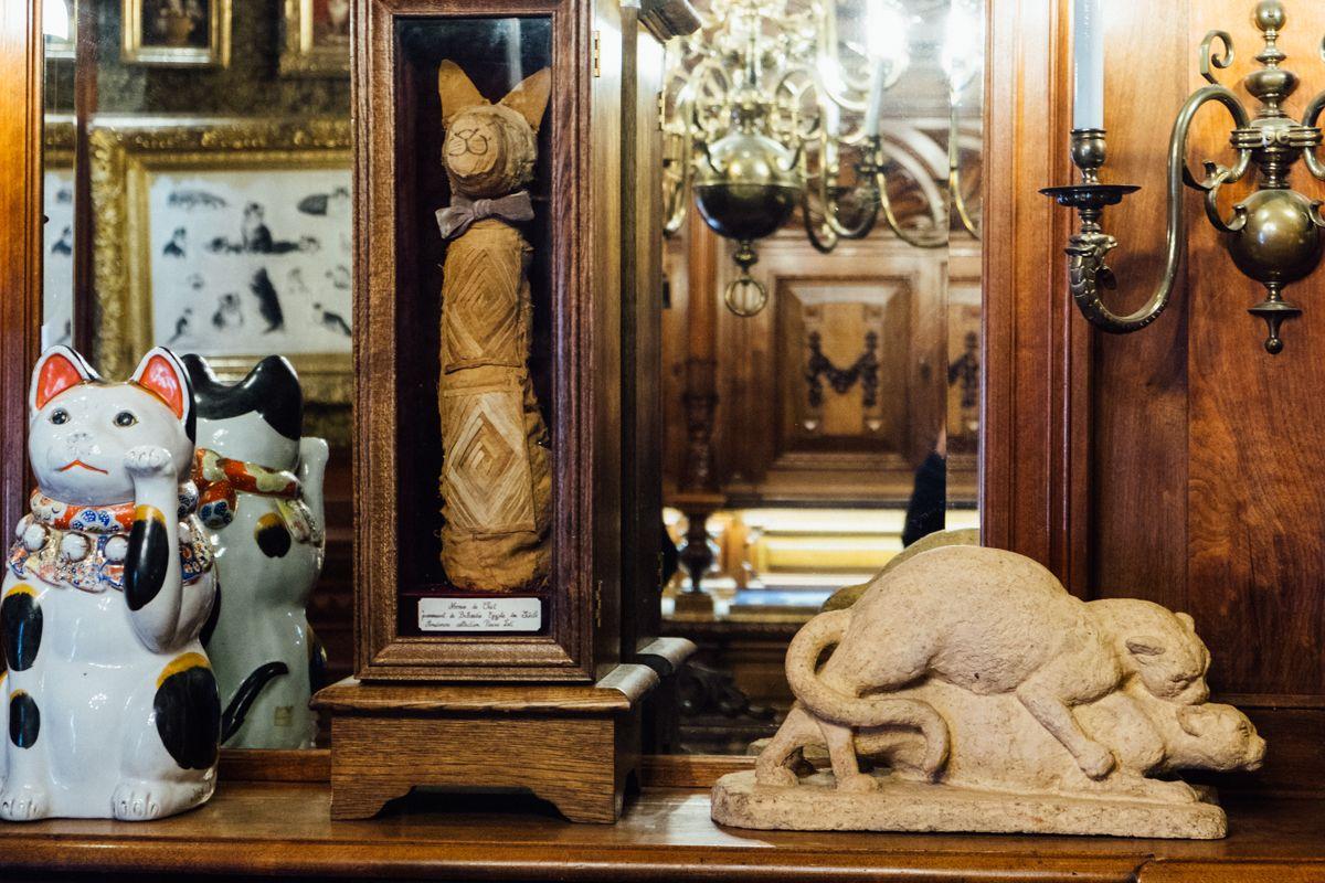 Cat mummy in Kattenkabine, Amsterdam